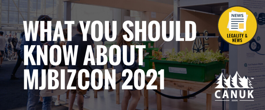 What You Should Know About MJBizCon 2021
