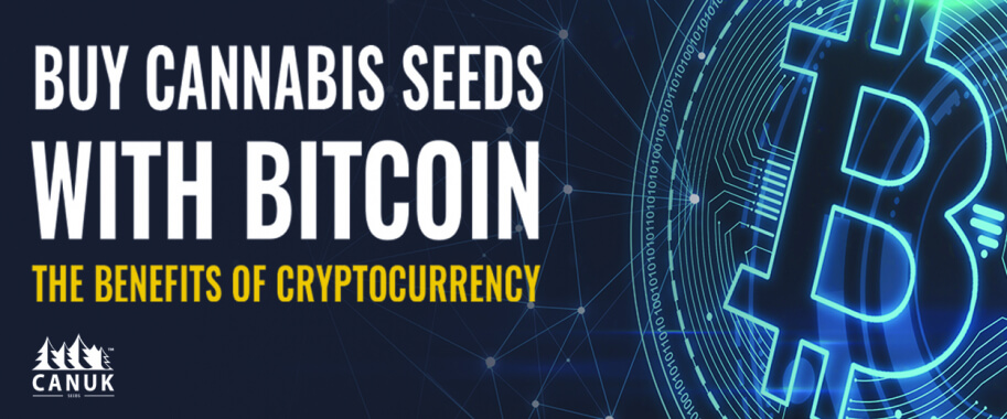 Buy Cannabis Seeds With Bitcoin: The Benefits of Cryptocurrency