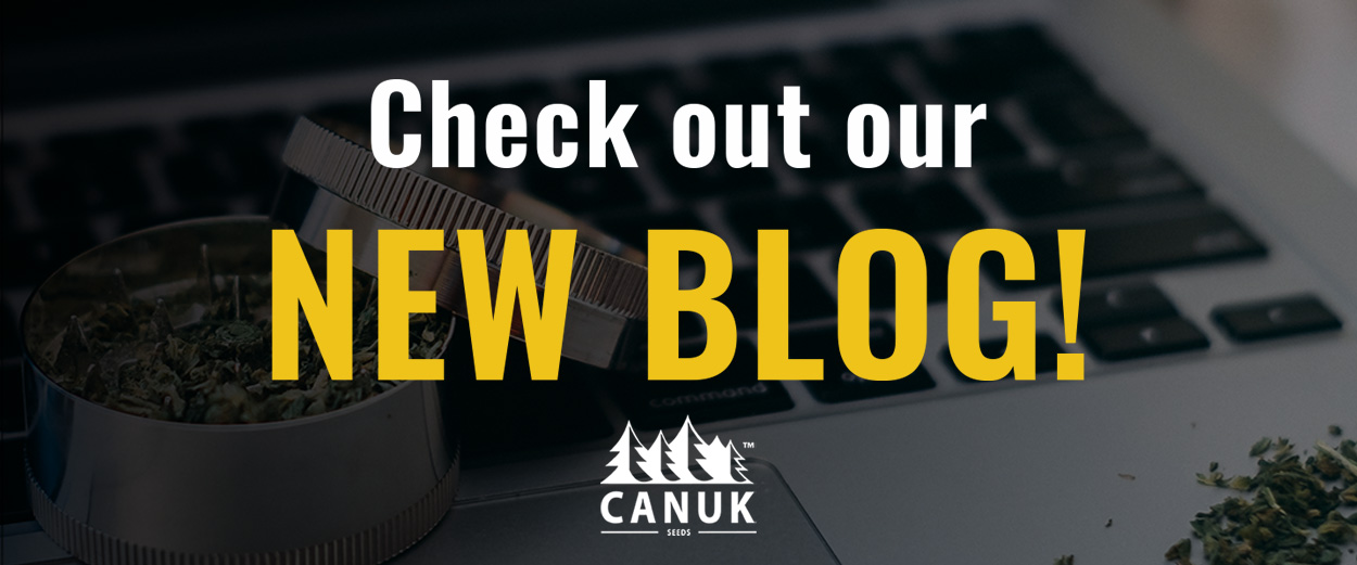 Canuk Seeds Blog