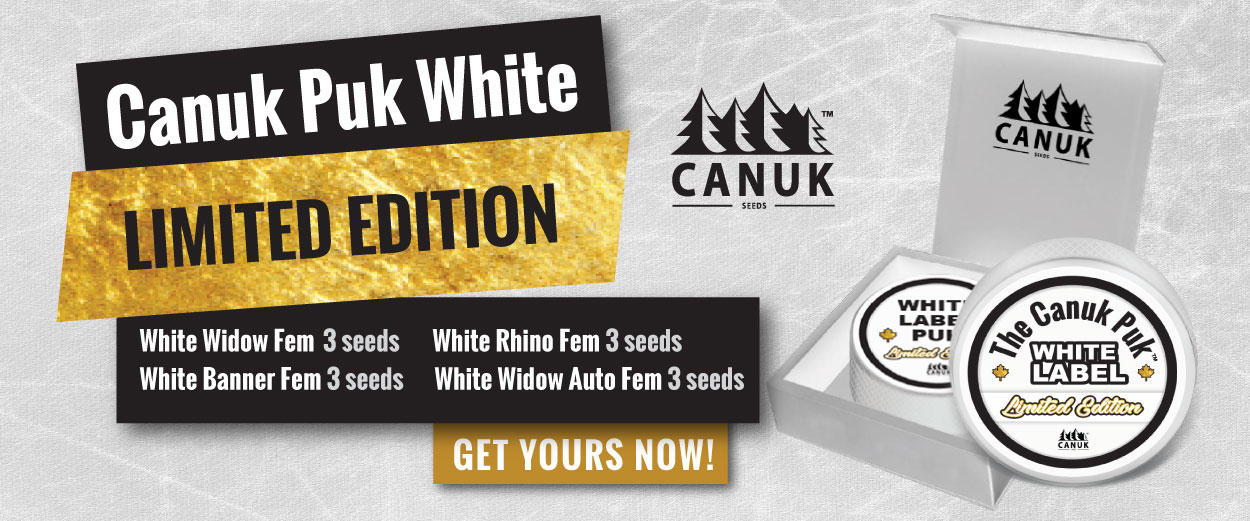 The Limited Edition Canuk Puk White