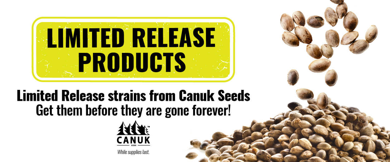 Canuk Seeds: Limited Release